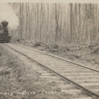 http://chronicle.tadl.org/history_import/Images/016/3738.bmp