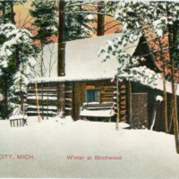 """Winter at Birchwood, Traverse City,"" ca. 1909"