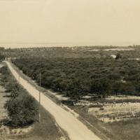 http://localhistory.tadl.org/files/original/e55bebe1242fbe07a7a4248fc9410931.tif