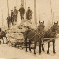 http://localhistory.tadl.org/files/original/fw03013_150af8453f.tif
